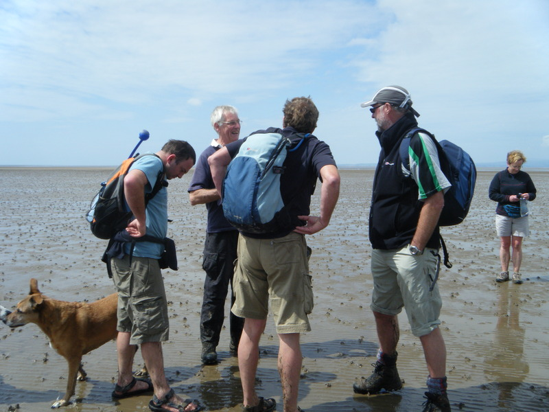 Plotting to win! Morecambe bay walk 2011