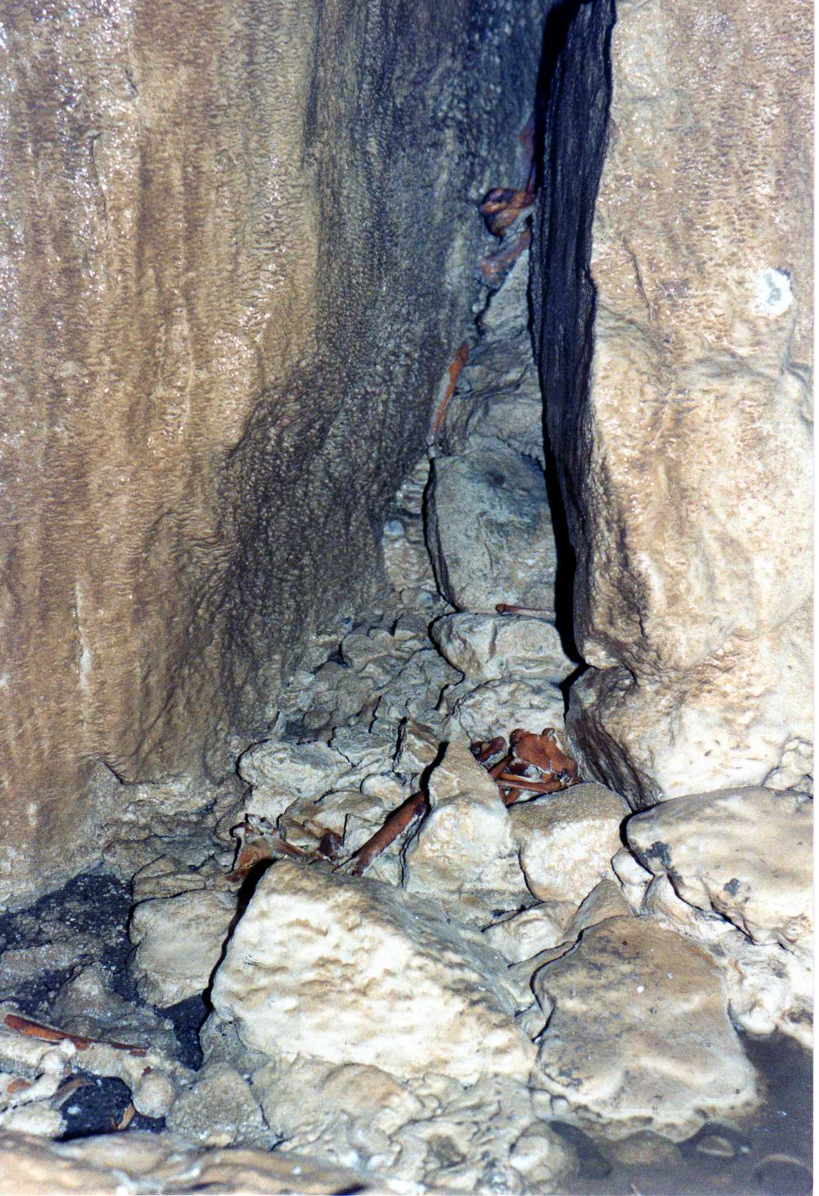North End Pot bone slope 1987